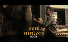 Review: Water for Elephants